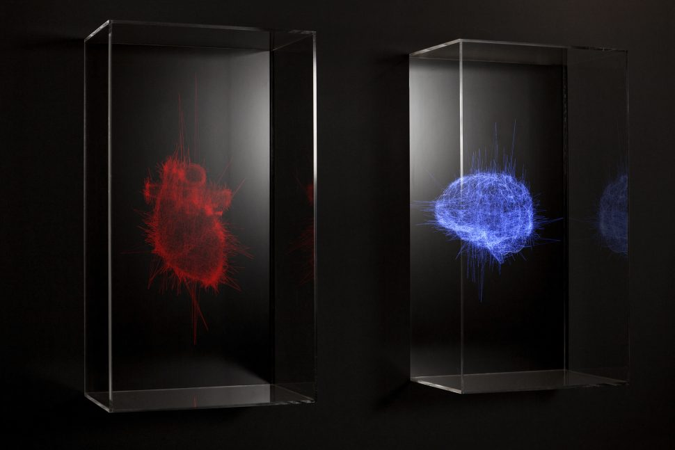 Pascal Haudressy, Dyptique, 2009, Screen, video and plexiglass, Variable dimensions, numeric loop
