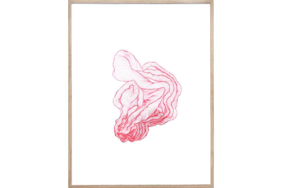 Tatiana Wolska, Untitled, 2017, Ink on paper, 65 x 50 cm