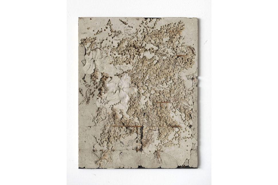 Alessandro Piangiamore, Ieri Ikebana 09032017, 2017, Concrete, flora, metal, 64 x 50 x 2,5 cm