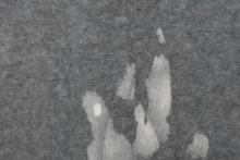 Gudny Rosa Ingimarsdottir, untitled - humide, 2019, Ink, arababic gum, pencil, diverse papers, 103,4 x 71,4 cm (framed) (detail)