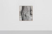Corinne Silva, The Score / Tilia platyphyllos, 2020, Giclée print on Baryta paper, 111 x 129.2 cm (Ed. of 3)