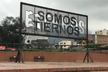 Iván Argote, Somos Tiernos Eternos, installation at Museo de Arte Moderno de Bogotá (CO), 2017