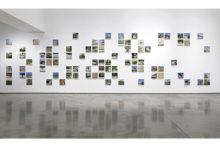 Corinne Silva, installation view of Garden State in