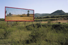 Corinne Silva, Imported Landscapes, 2010, site-specific installation and c-type photograph, 179cm x 143 cm