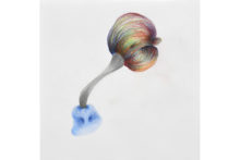 Tatiana Wolska, Untitled, 2020, Colored pencil on paper, 24,5 x 24,5 cm